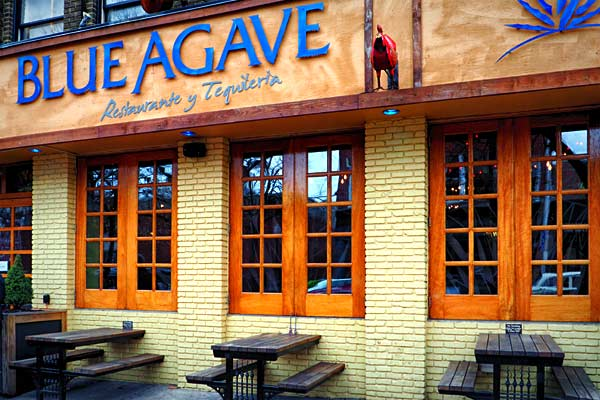 Blue Agave Baltimore Restaurants And Bars